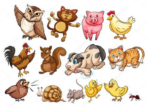 imagenes animales varios diferentes tipos de animales de granja y mascotas