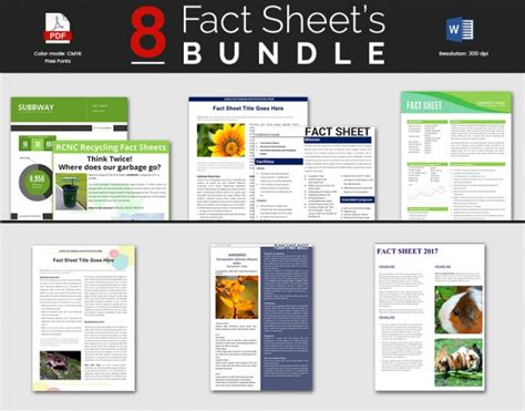 sle fact sheet template 13 free download documents