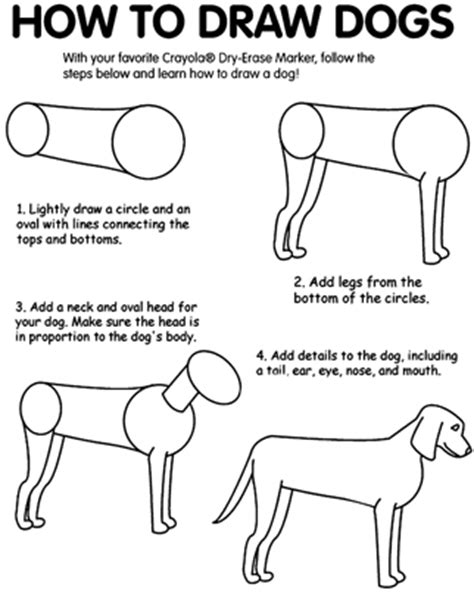 how to use you doodle how do you draw a doggies