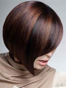 hair color high light bold multi color highlights on dark hair dark brown hairs