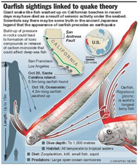 earthquake theory environment oarfish sightings linked to quake theory