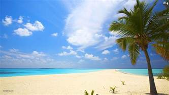 best image beach backgrounds image wallpaper cave