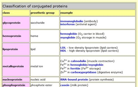 8 proteins in the and their functions protein biology4isc