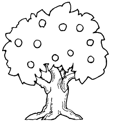 Tree Drawings Black And White Cliparts Co Black And White Tree Coloring Page