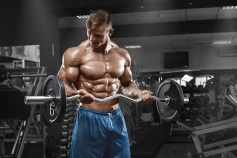 imagenes fitness hd 男らしい上腕二頭筋の鍛え方 ダンベルなど正しい筋トレ10種類 smartlog
