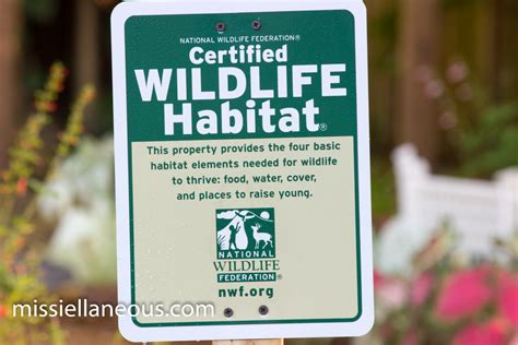 national wildlife federation backyard habitat national wildlife federation backyard habitat outdoor goods