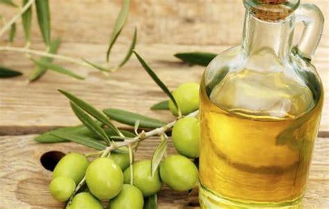 Jenis Dan Minyak Zaitun jenis jenis minyak zaitun kegunaan dan manfaatnya