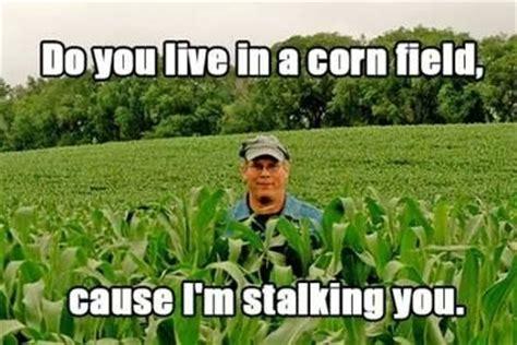 cornymemes 187 corny memes corny jokes corny humorcorn