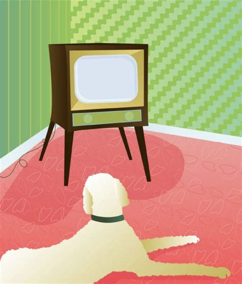 how do you your to stop barking how to stop pet barking at dogs on television toronto