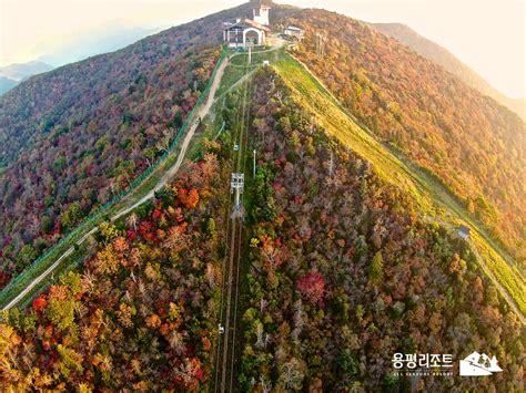 agoda yongpyong ski resort yongpyong resort tower condo pyeongchang gun