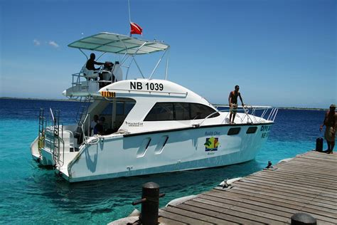sea lion dive boat 3 ideal caribbean destinations for new divers