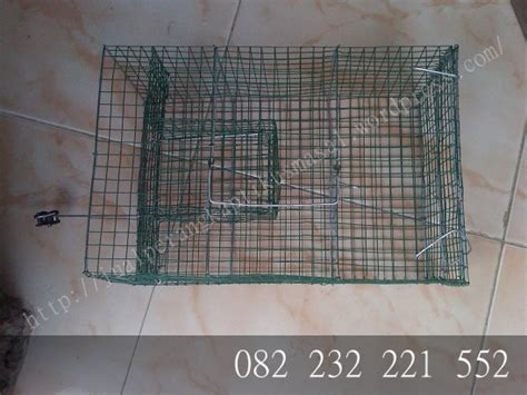 membuat perangkap tikus sendiri cara membuat perangkap tikus massal produk perangkap