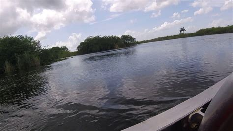 everglades boats youtube everglades air boat alligator tour at holiday park youtube