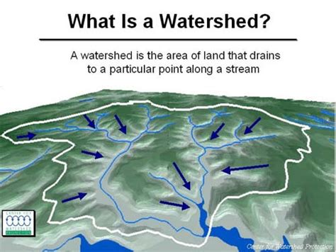 Define Water Shed william watershed primer