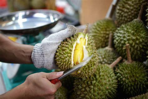 fruit x asia 6 southeast asian fruits to sle