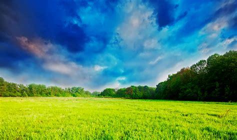 gambar padang rumput  langit  mendung