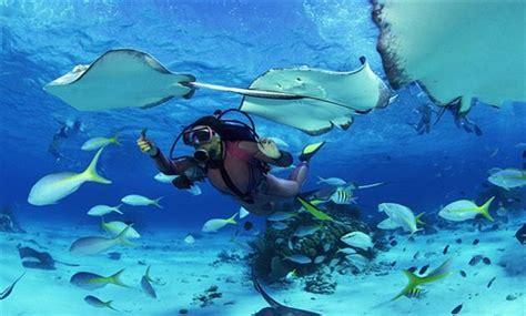 Tidung Island Diving Trip rixos sharm el sheikh