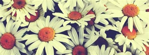Pretty Covers Pretty Flowers Covers Girly Fb Cover