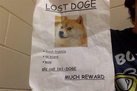 Lost Doge Meme - doge meme original