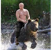 Cause Were America On Twitter Hey Obama Putin Rides Bears Better