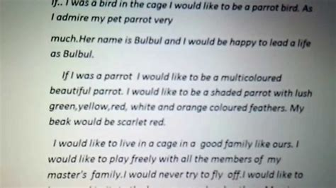 Caged Bird Essay by Caged Bird Essay The Caged Bird Sings Essay Imagery In Caged Bird Gcse Marked By
