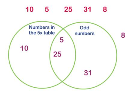 Teaching Venn Diagrams Ks2