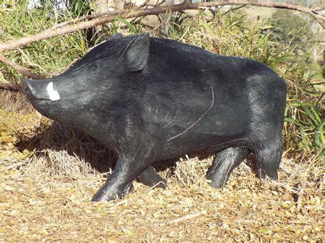 southern cross targets sct  trotting boar target black