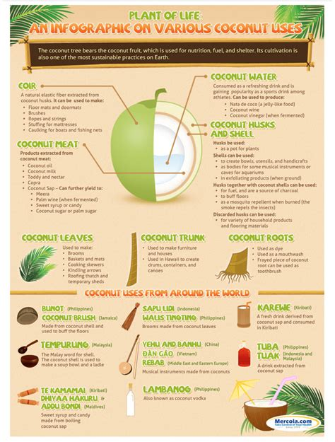 Coconut Detox Nutritional Information by Coconut Benefits Rado Nutrition Nutrition Facts Detox