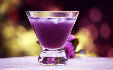 martini purple cocktail corner purple rain
