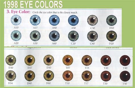 list of eye colors best 25 eye color charts ideas on