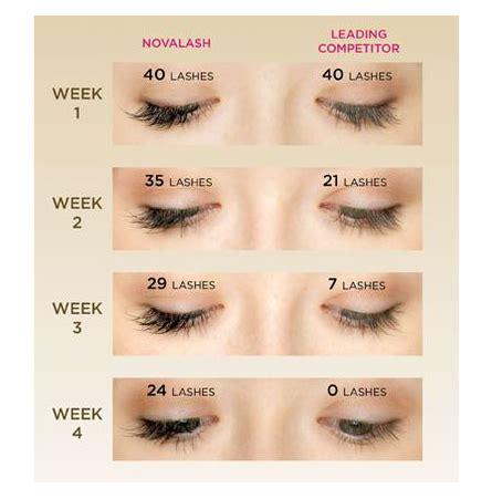 novalash extensions ks microblading eyebrows & lash academy