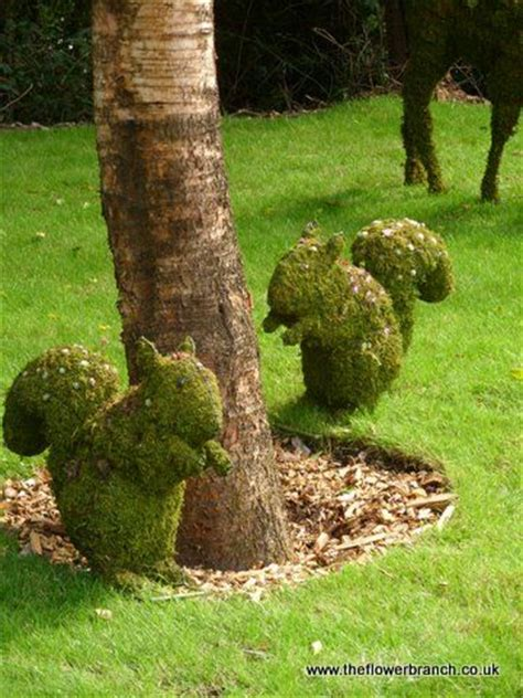 squirrel topiary longleat park shape it topiary