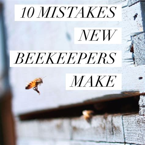 How To Keep Bees Or Bee Keeping In Rhode Island 17 best images about beekeeping on bee skep