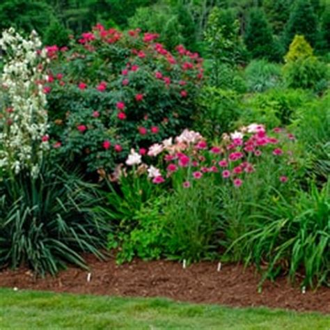 Raleigh Botanical Garden Juniper Level Botanic Garden Botanical Gardens 9241 Sauls Rd Raleigh Nc United States