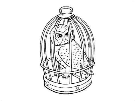 harry potter coloring pages owl 8 harry potter coloring pages jpg ai illustrator