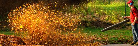 lawn gear    fall cleanup consumer reports