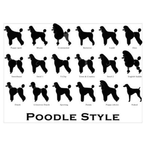 what are yhe different kinds of poodle cuts poodle grooming poster miami is classy para frenchi