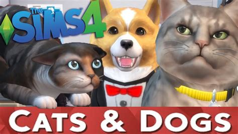 dog house torrent the sims 4 cats dogs pc jeux torrents