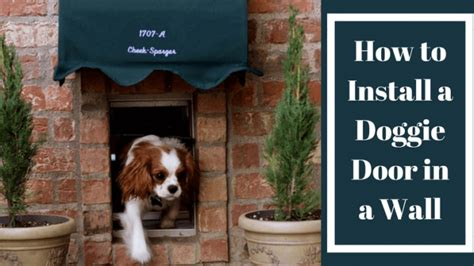 how to install a door in a wall how to install a doggie door in a wall the best way
