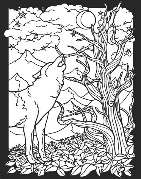 night animals coloring page 82 coloring pages nocturnal animals pictures of