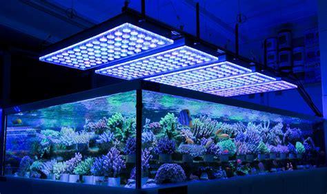 Reef Aquarium Lighting by German Store Displays Beautiful Coral Atlantik V4 Led