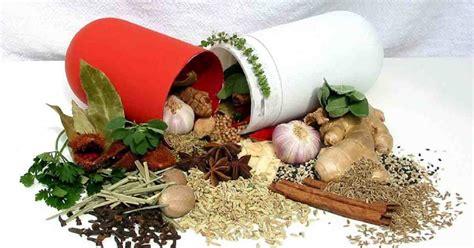 Obat Herbal Mengobati Sipilis mengobati sipilis secara herbal tanpa efek sing obat