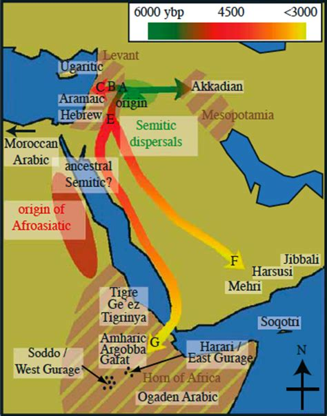 Semitic Also Search For Negus Perra Pharaohs Of Ancient Kemet Egyptsearch Reloaded