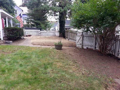 Backyard Cleanup Services 28 Images Backyard Cleaning Backyard Cleaning Services