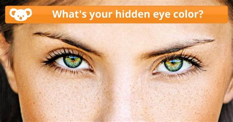 Whats Your Hidden Eye Color Quiz Quotev   what s your hidden eye color koala quiz