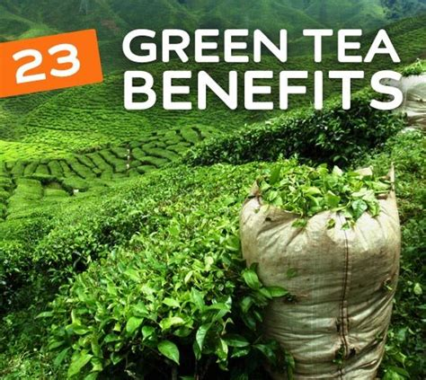 How Often Should I Drink Detox Tea by 23 Benefits Of Green Tea For Your Health Weight Loss Skin