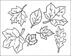 Template To Cut Out by Leaf Template Printable Leaf Templates Free Premium