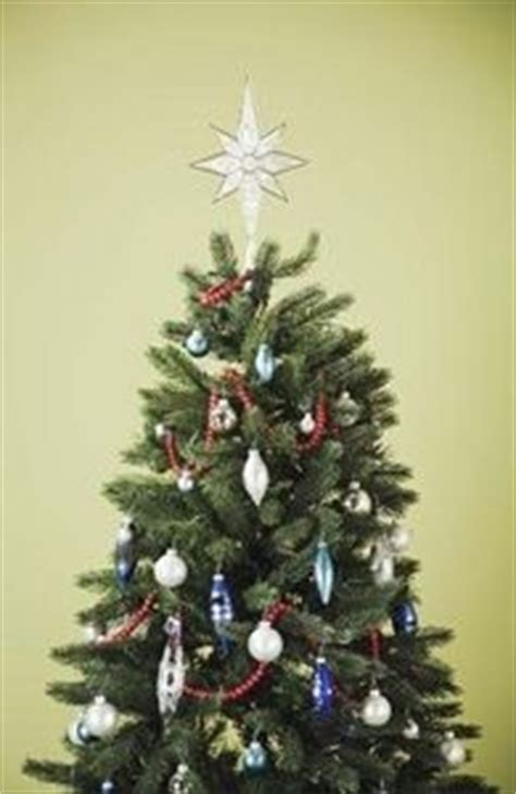 how to revive a dying christmas tree trees christmas
