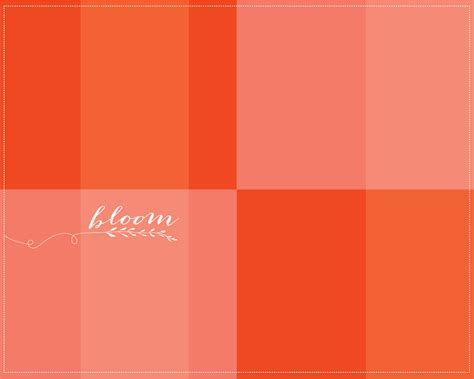 coral color home decor 100 coral color home decor exterior paint colors
