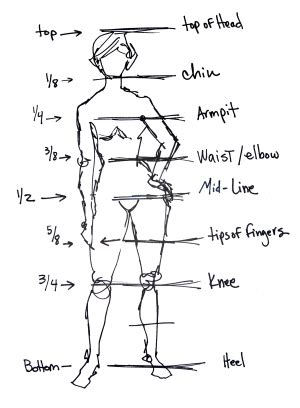 drawing with measurements how to draw the basics of figure drawing